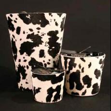 La Vache blanche et noire M